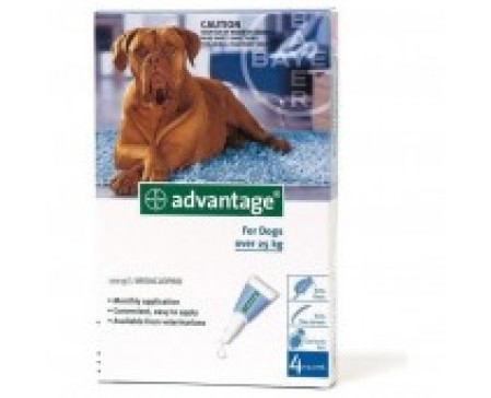 Advantage Dog XL