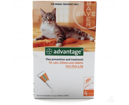 Advantage Cat S