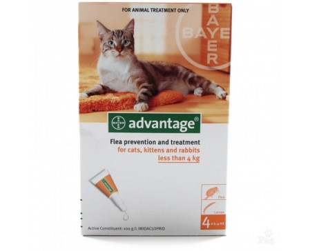 ac-advantage-small-cat-4kg