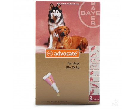 Advocate Dog Large