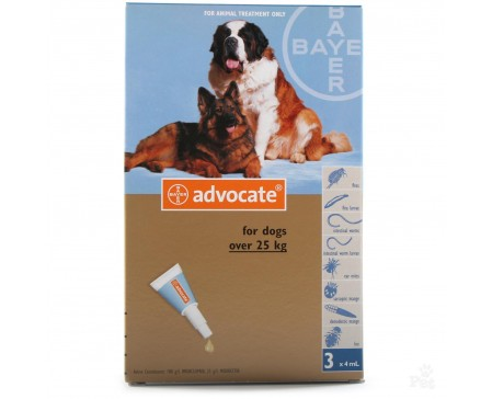 Advocate Dog XL