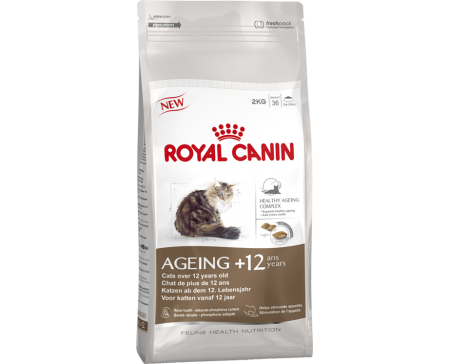 royal-canin-aging-cat-food