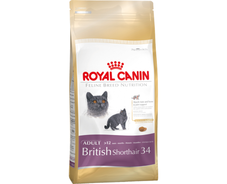 royal-canin-feline-british-shorthair