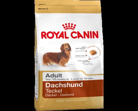 royal-canin-dog-dachshund-adult