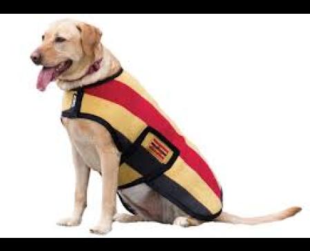 rambo-dog-fleece-rug-gold