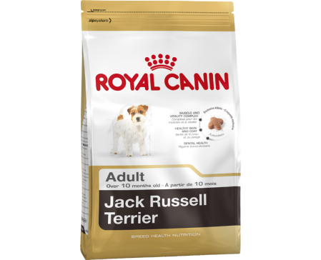 royal-mini-jack-russel-adult-dog-food