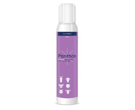 panthox-antibacterial-skin-spray