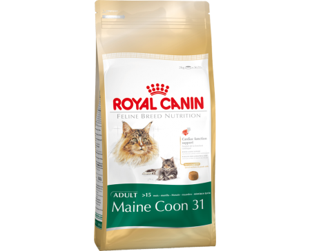 royal-canin-feline-maine-coon