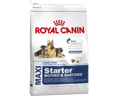 royal-canin-dog-maxi-starter-mother-baby