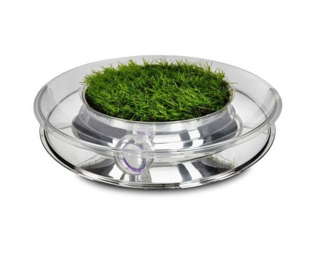 petstages-nature-track-cat-toy