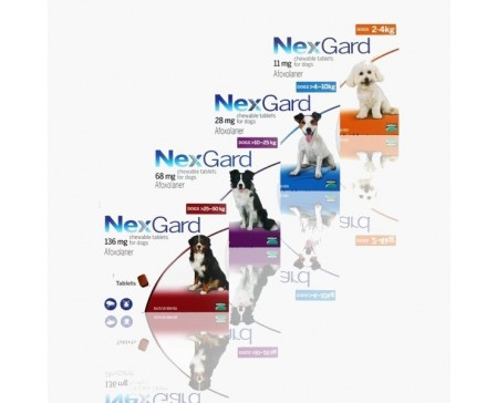 nexgard-flea-tick-preventative-dog-single-tablets