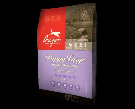 orijen-large-breed-puppy-dog-food