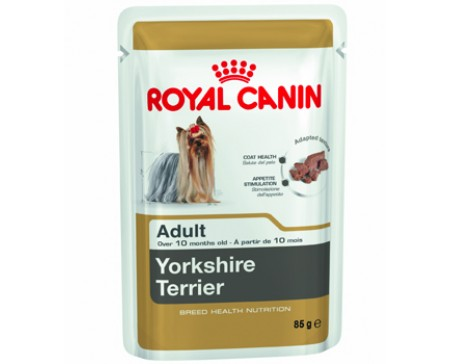 royal-canin-dog-pouches-yorkshire-terrier