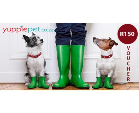 doggy-dash-yuppie-pet-gift-voucher-150