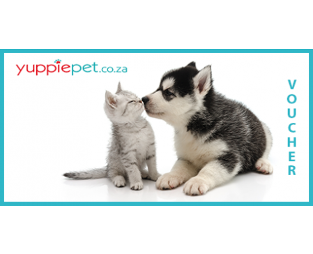 Gift Card - Kitten & Puppy