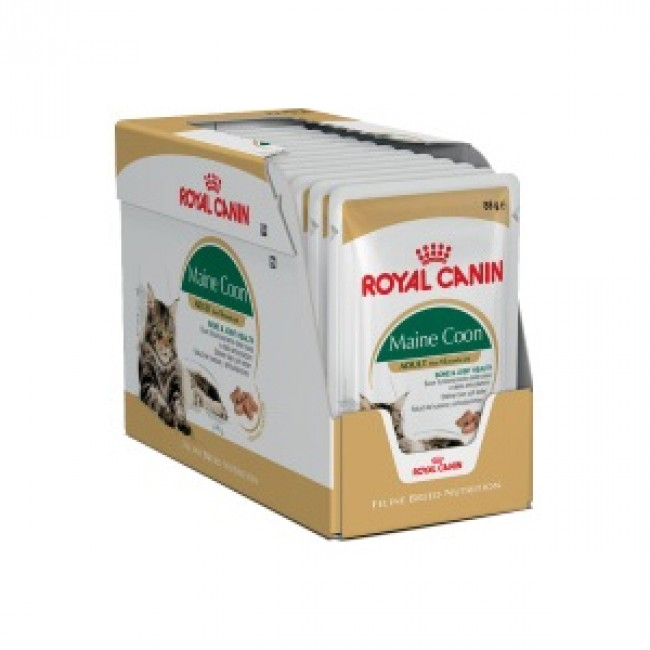 royal canin feline breed maine coon 12 x 85g pouches. Black Bedroom Furniture Sets. Home Design Ideas