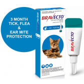 bravecto-spot-on-medium-cat