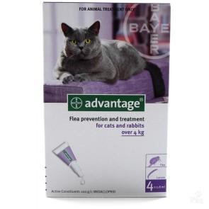 Advantage Cat L