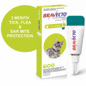 bravecto-spot-on-small-cat