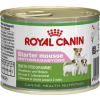 Royal Canin Puppy Starter Mousse - 3 x 195g