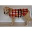 dog-jackets-small-26cm